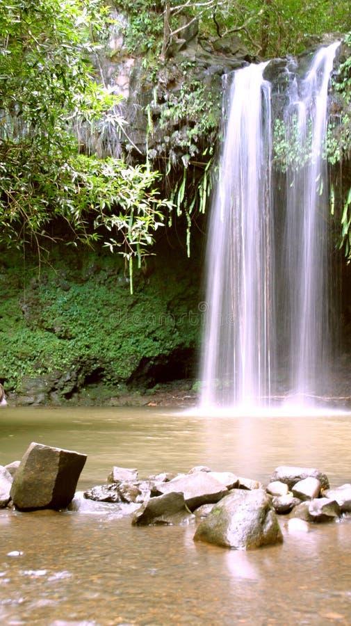 Wasserfall im Paradies stockfotos