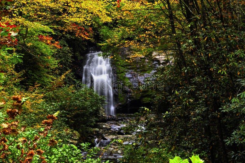 Wasserfall im rauchiger Gebirgsnationalpark im Fall stockbild