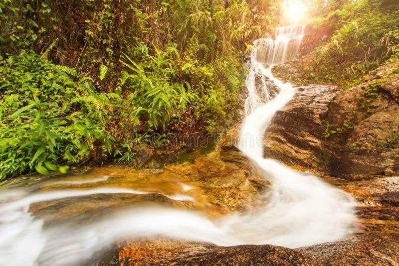 Wasserfall im Regenwald mit Sonnenstrahl stockfotografie