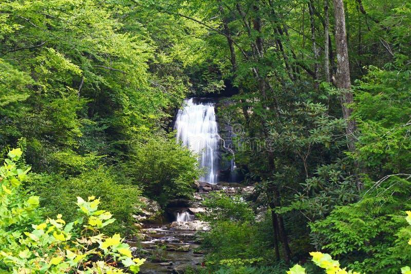 Wasserfall im schöner rauchiger Gebirgsnationalpark lizenzfreie stockfotografie