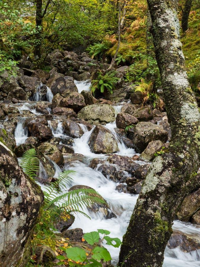 Wasserfall im Tal Glen Nevis, Schottland stockbilder