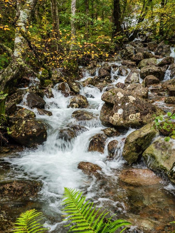 Wasserfall im Tal Glen Nevis, Schottland lizenzfreies stockbild