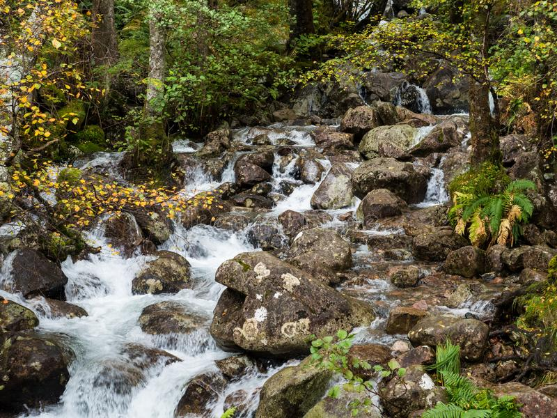 Wasserfall im Tal Glen Nevis, Schottland stockbild