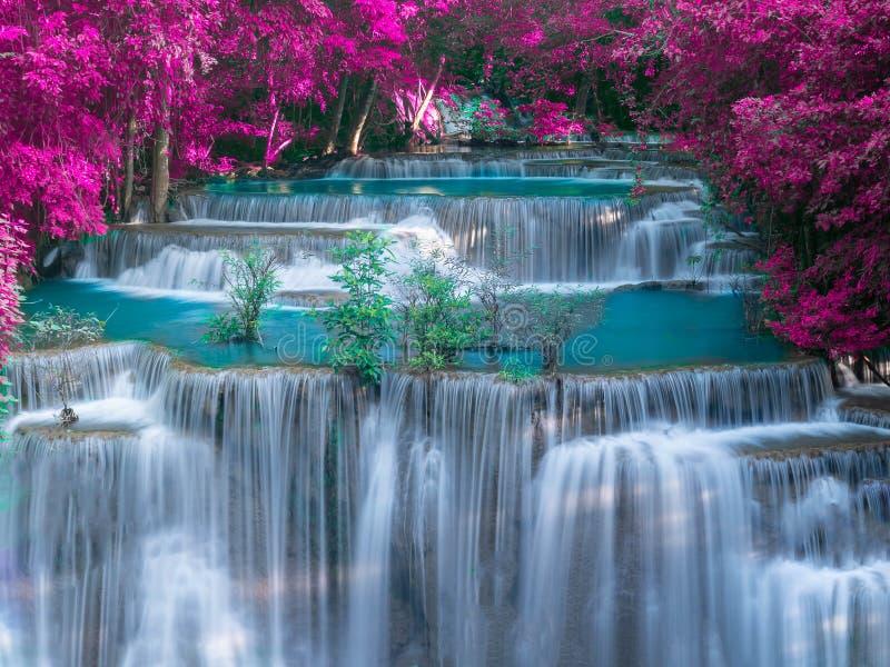 Wasserfall im tiefen Regenwalddschungel mit purpurrotem Urlaub - Huay Mae Kamin Waterfall in Kanchanaburi-Provinz, Thailand stockfoto