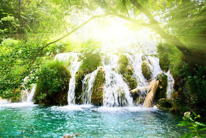 Wasserfall im tiefen Wald stockbild