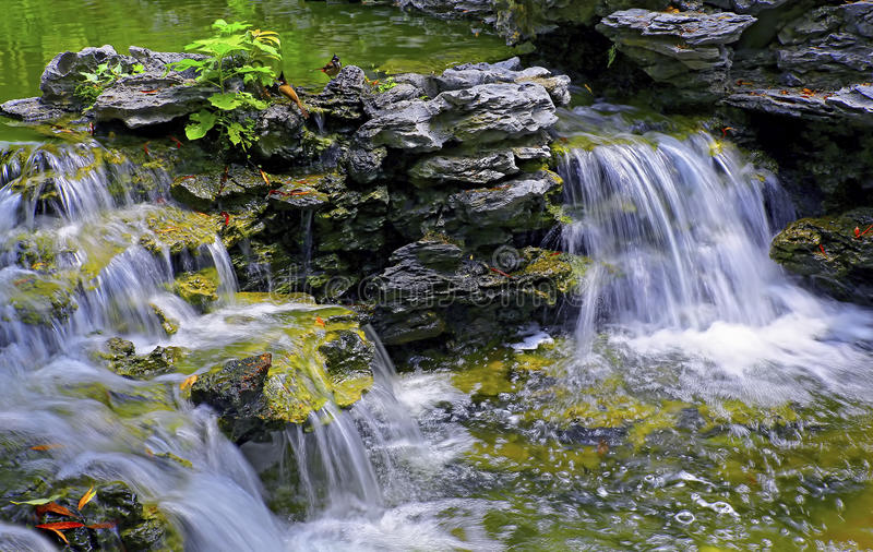 Wasserfall im tropischen Garten stockfotografie