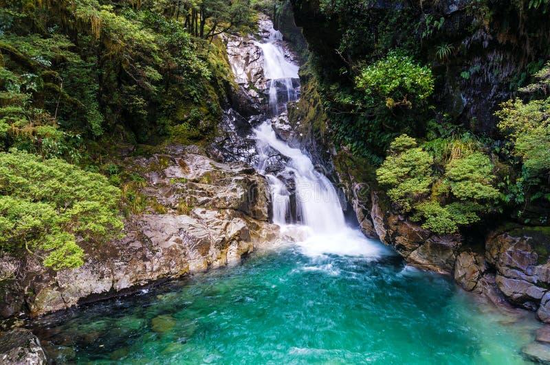 Wasserfall im tropischen Regenwald, Neuseeland stockfotografie
