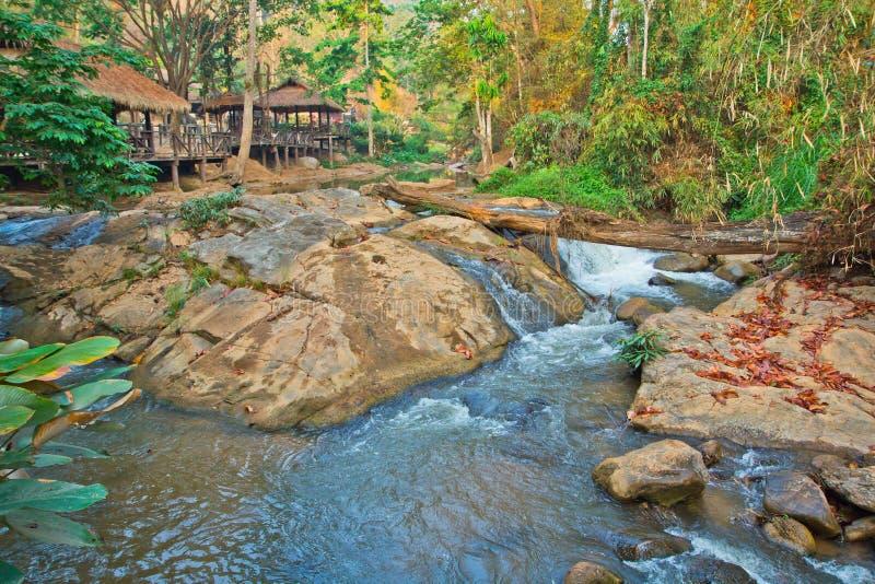 Wasserfall im Wald lizenzfreies stockfoto