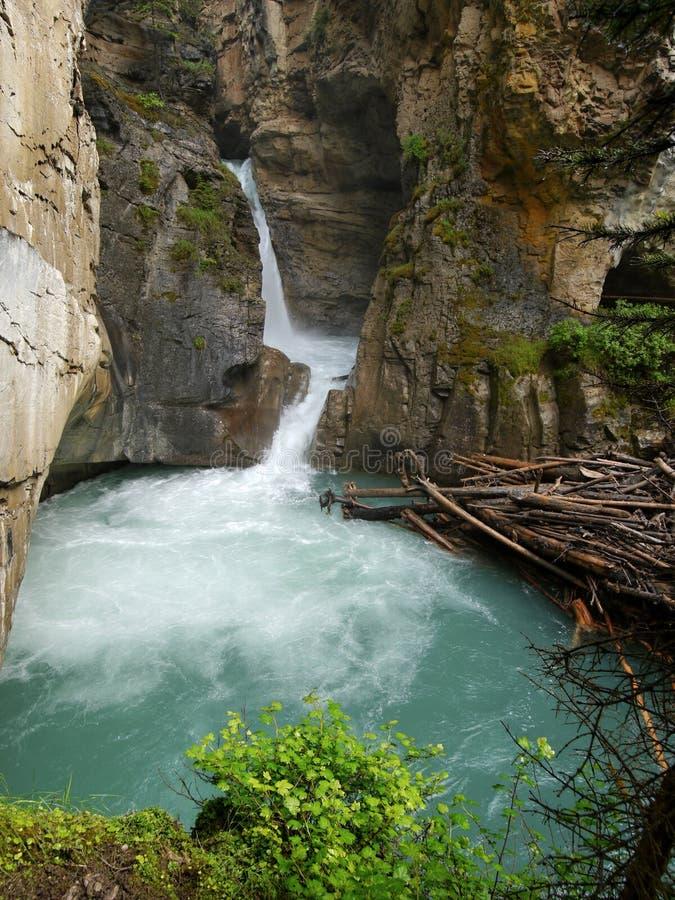 Wasserfall in Johnston-Schlucht lizenzfreies stockbild