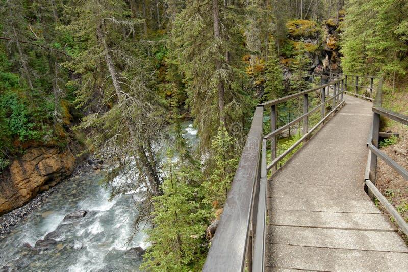 Wasserfall in Johnston-Schlucht lizenzfreie stockfotografie