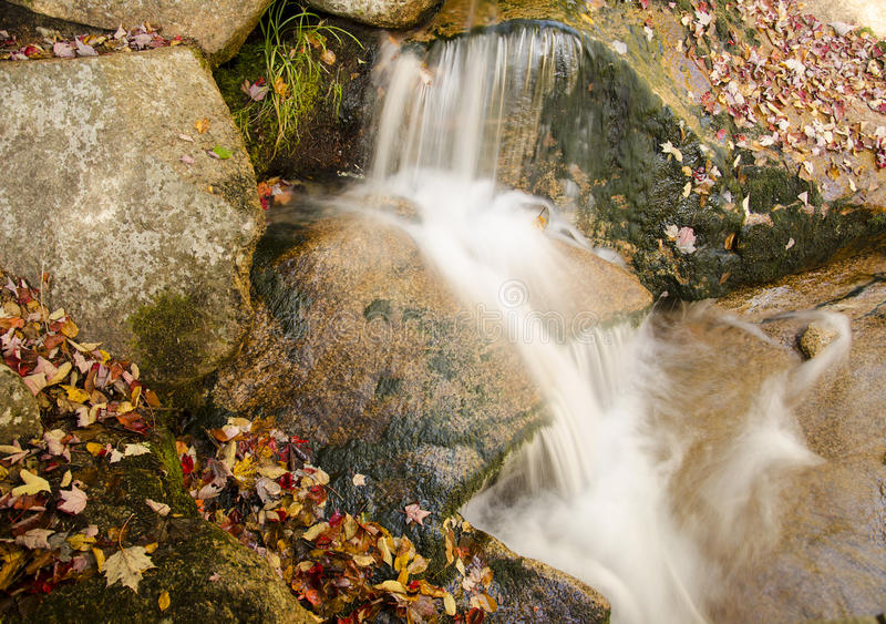 Wasserfall (Laub) lizenzfreies stockbild