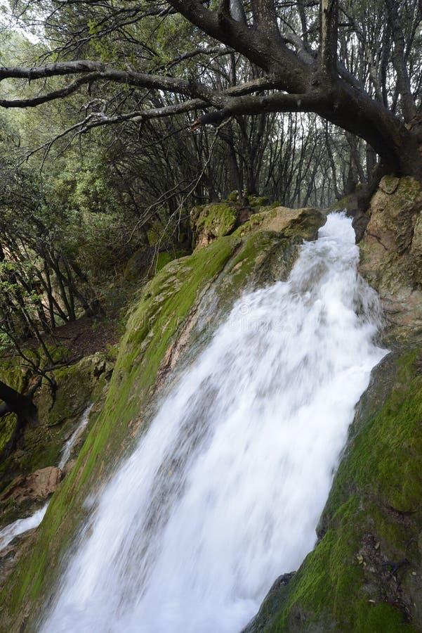 Wasserfall in Mallorca stockfotografie