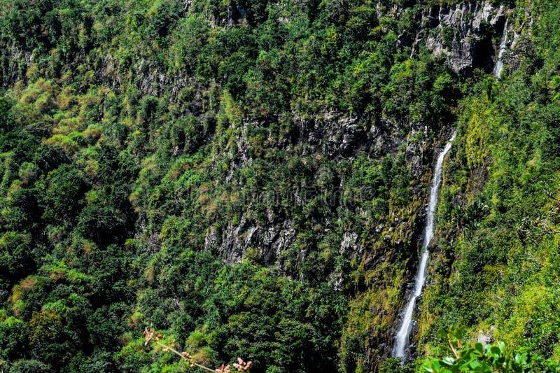 Wasserfall in Mauritius stockfoto