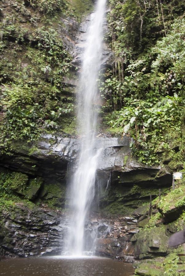 Wasserfall nahe der Stadt von Tarapoto, Peru lizenzfreie stockfotos
