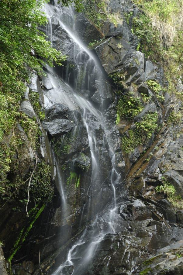 Download Wasserfall Am Pool Der Braut, Hong Kong Stockbild   Bild Von Grün,  Wasser