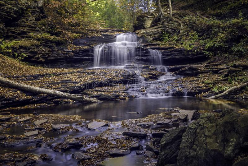 Wasserfall in Ricketts Glen State Park stockfotografie