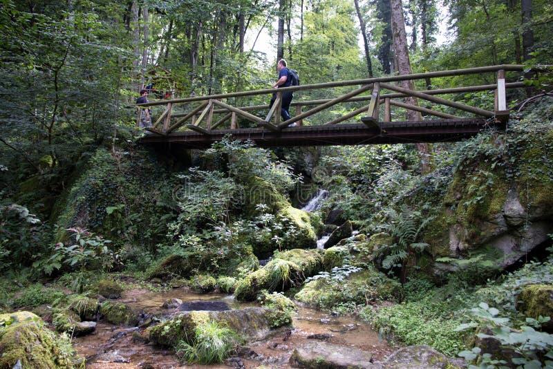 Wasserfall in Sasbachwalden lizenzfreie stockfotos