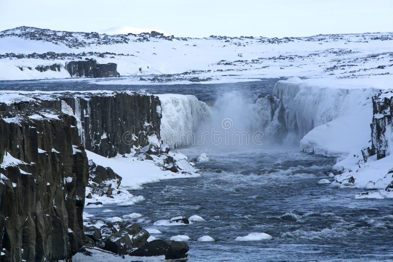 Wasserfall Selfoss in Island, Winterzeit lizenzfreie stockfotografie