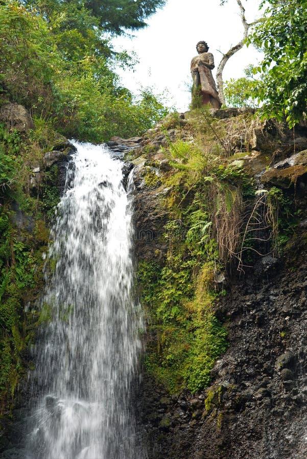 Wasserfall in Tanzania stockbilder