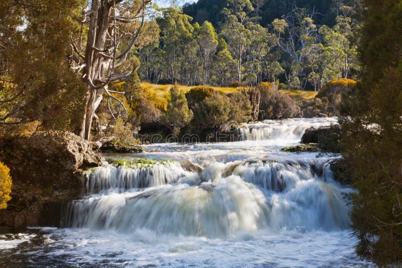 Wasserfall in Tasmanien stockfotos