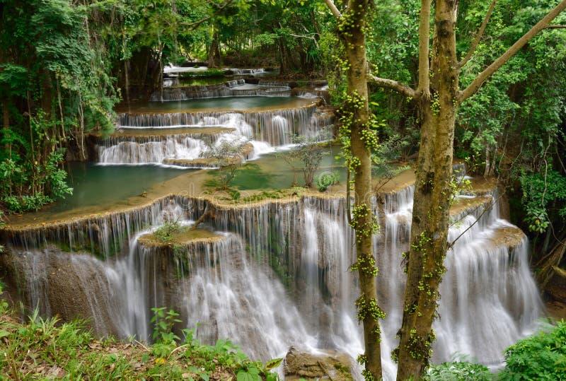 Wasserfall in tropischen Wald lizenzfreies stockfoto
