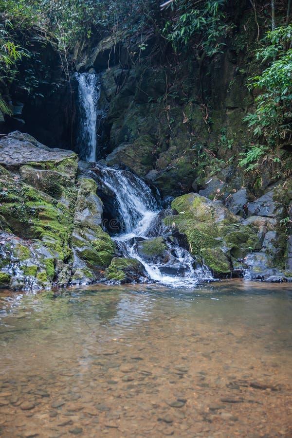 Download Wasserfall Und Kleiner See Im Regenwald Von Khao Sok Sanctuar Stockbild - Bild von regen, betriebe: 90229359