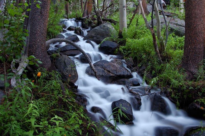 Wasserfall-Unschärfe 2 stockfotos