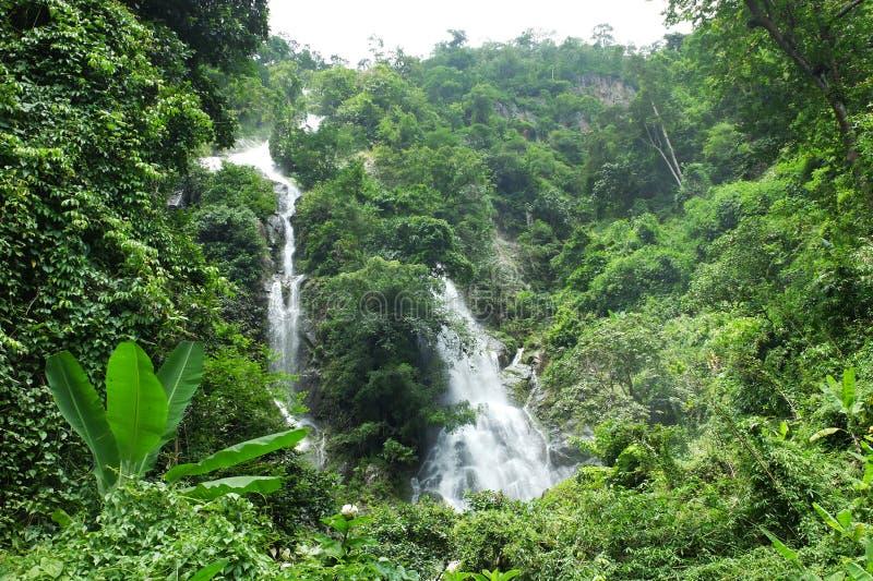 Wasserfall vom Berg in Thailand lizenzfreie stockfotos