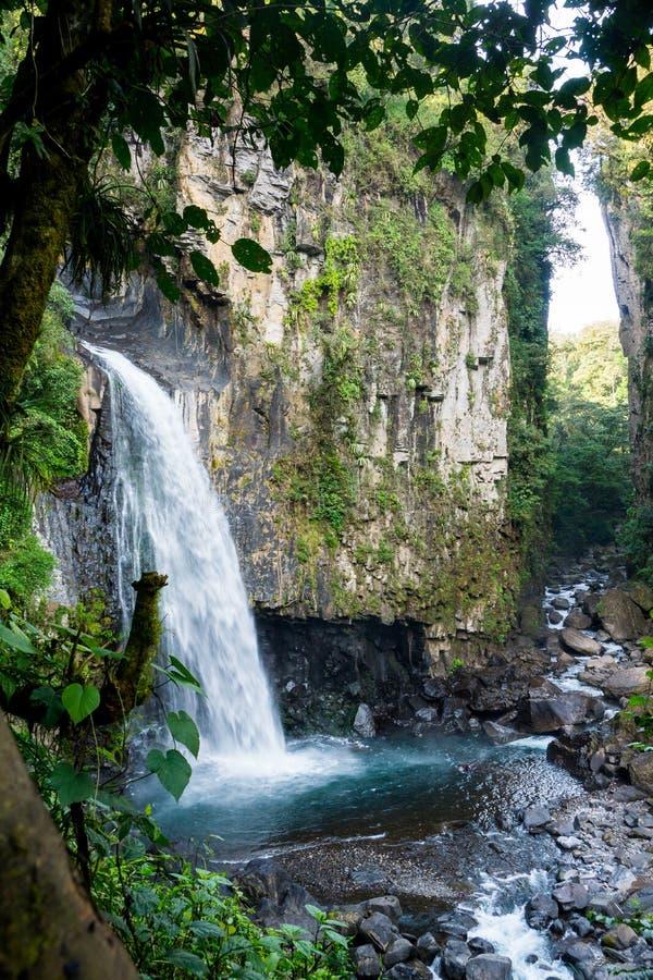 Wasserfall von Nebel Mexikos Xico Veracruz forrest stockfoto