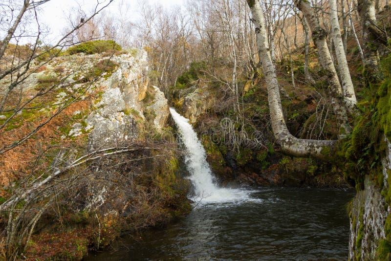 Wasserfall zwischen Buchen-Felsen und Moos stockfotografie
