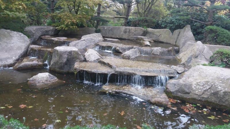 Wasserfallparkstein wather Naturrasenbaum Fruling beuty entspannen sich stockbild