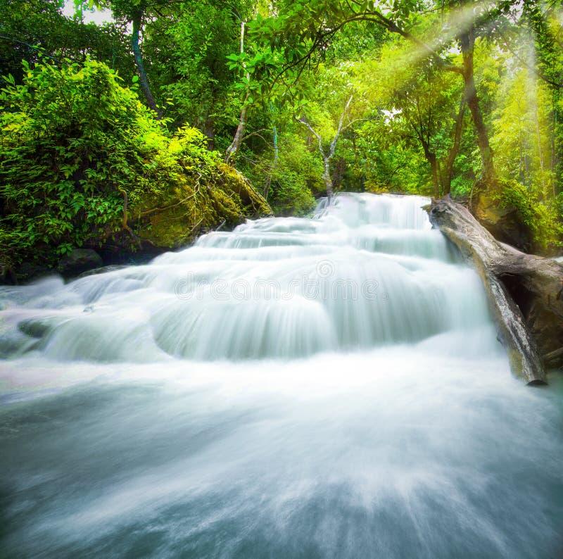 Wasserfallpoollandschaft lizenzfreies stockfoto