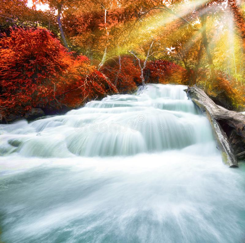 Wasserfallpoollandschaft stockbilder