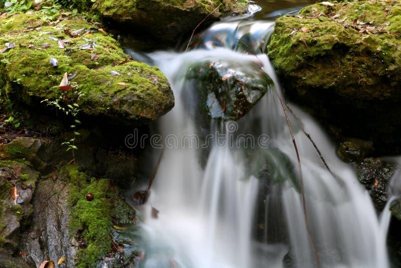 Wasserfallregenbogenfrühlinge stockbilder