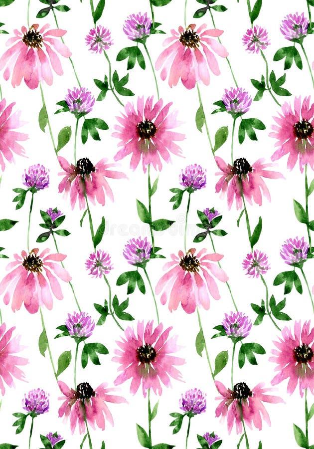 Wasserfarbenes Muster für nahtlose Wildfeldklee und Echinacea-Blüten Endlos gedruckt in: Textilien, Kleidung, Mode, Bettwäsche, K vektor abbildung