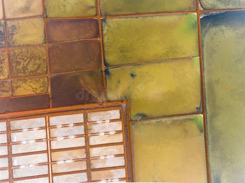 Wasserfelder von einer Panoramasicht Rosa Sonnenuntergang und hellgr?nes Laub lizenzfreie stockfotos