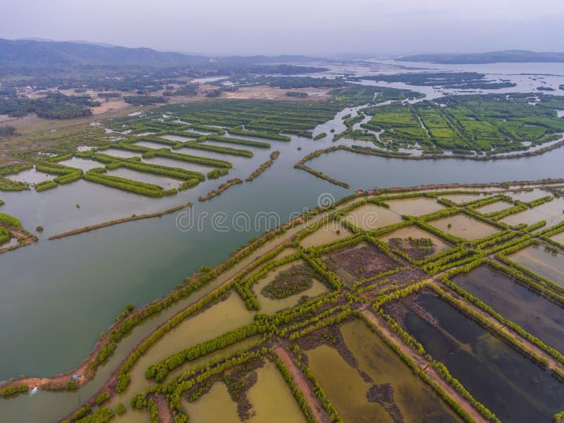 Wasserfelder von einer Panoramasicht stockfotografie