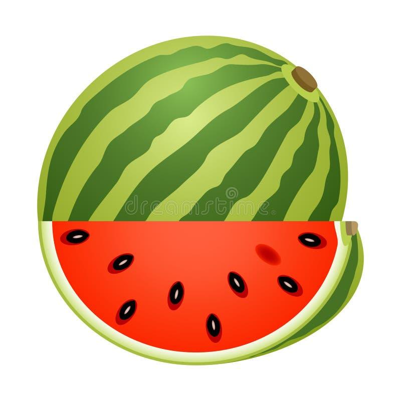 Wassermelone mit der Scheibe lokalisiert auf Weiß vektor abbildung