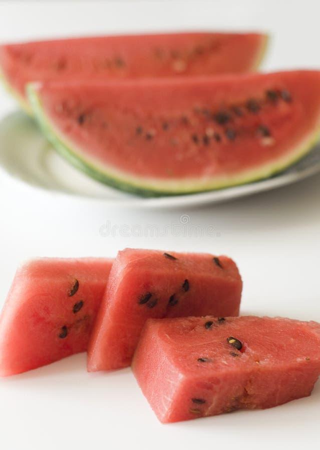 Wassermelone mit Startwerten für Zufallsgenerator lizenzfreies stockbild