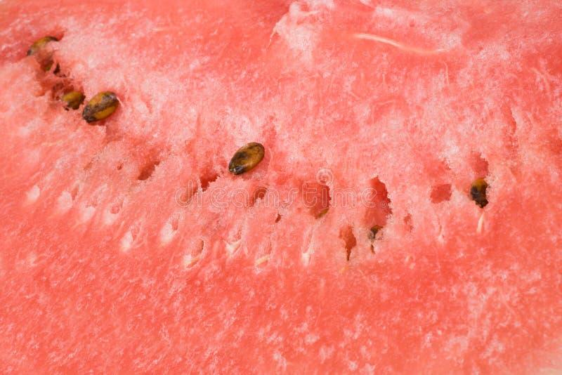 Wassermelonehintergrund stockfotografie