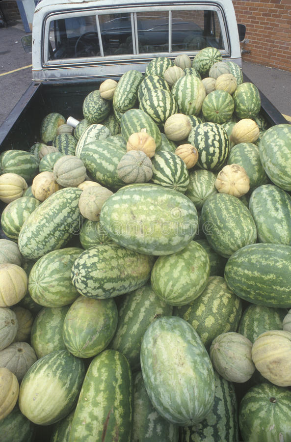 Wassermelonen in einem Kleintransporter, Augusta, GA stockbilder