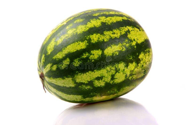 Wassermelonen getrennt auf Weiß lizenzfreie stockbilder