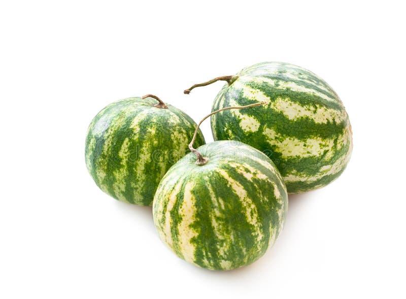 Wassermelonen lokalisiert auf weißem Hintergrund lizenzfreies stockfoto