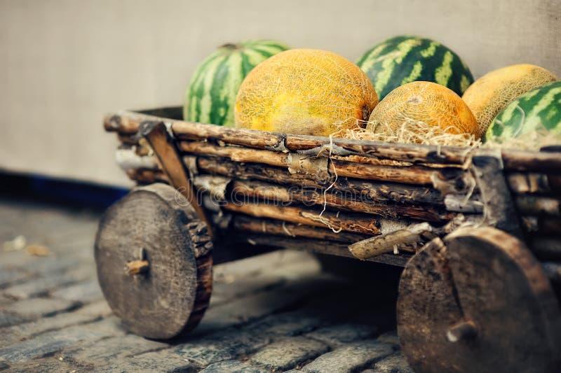 Wassermelonen und Melonen lizenzfreie stockfotos