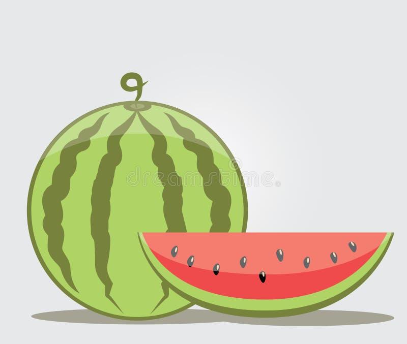 Wassermelonen-Vektor auf Lager stockfotos