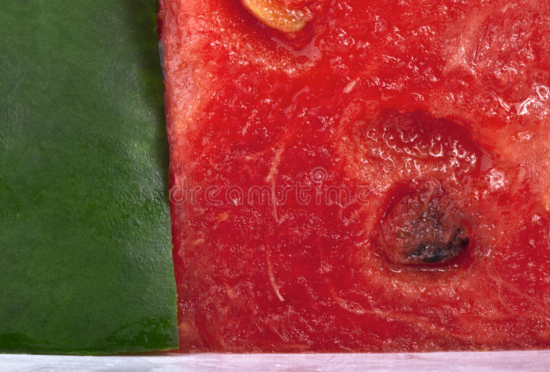 Wassermelonenahaufnahme stockfoto