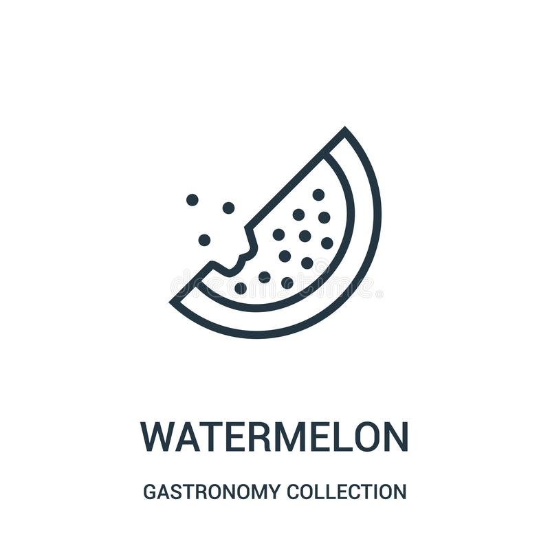 Wassermelonenikonenvektor von der Gastronomiesammlungssammlung D?nne Linie Wassermelonenentwurfsikonen-Vektorillustration vektor abbildung