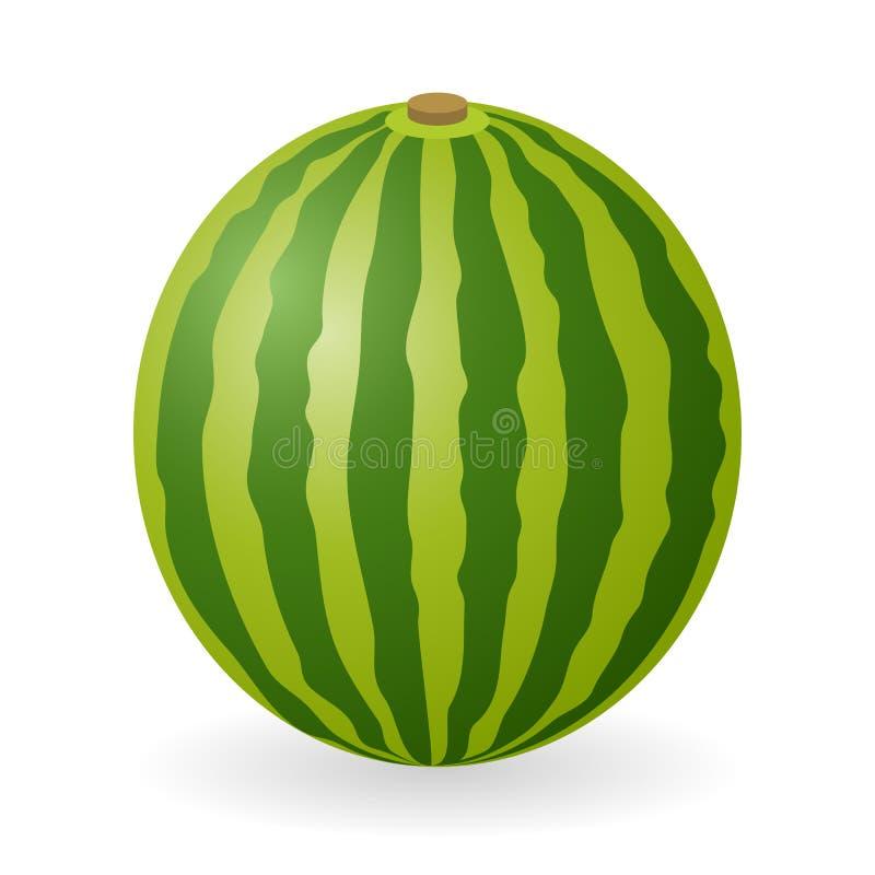 Wassermelonenvektor lokalisiert stock abbildung