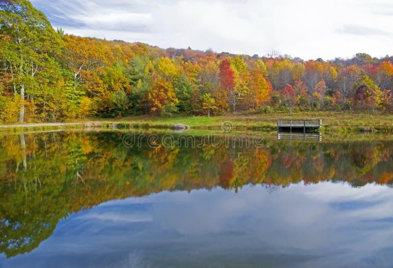 Wasserreflexionen im kleinen Teich im Fall lizenzfreies stockbild