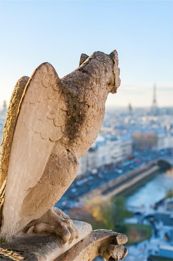 Wasserspeier mit den Flügeln, die Paris-Skyline betrachten stockfotos